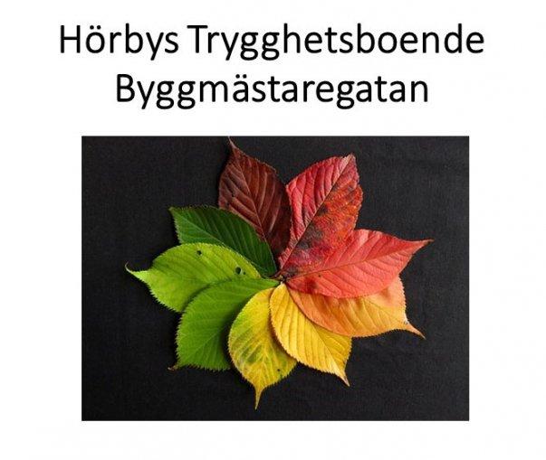 Löv i olika färger grön röd orange gul