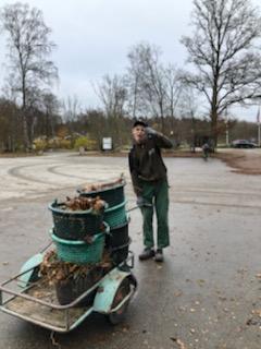 Skånes djurpark mata djur