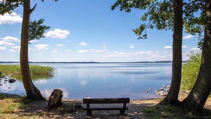Rönne å och Ringsjön – en förstudie